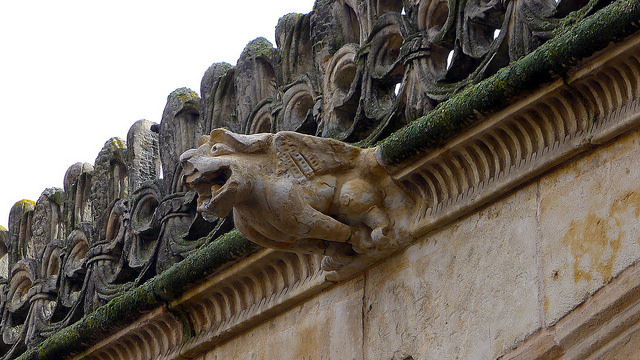 Gargoyle, Courtyard of the Casa de las Conchas (Salamanca Public Library), Salamanca, Spain. Photo by William Avery Hudson via flickr.