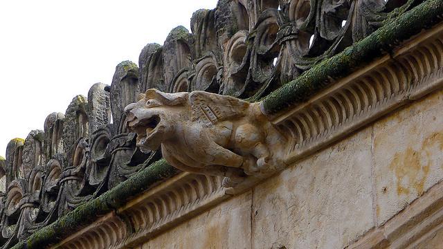 Gargoyle, Courtyard of the Casa de las Conchas (Salamanca Public Library), Salamanca, Spain. Photo by William Avery Hudson via flickr.