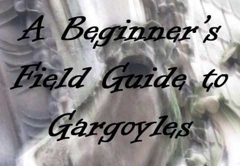 A Beginner's Field Guide to Gargoyles small
