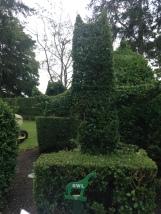 Owl topiary