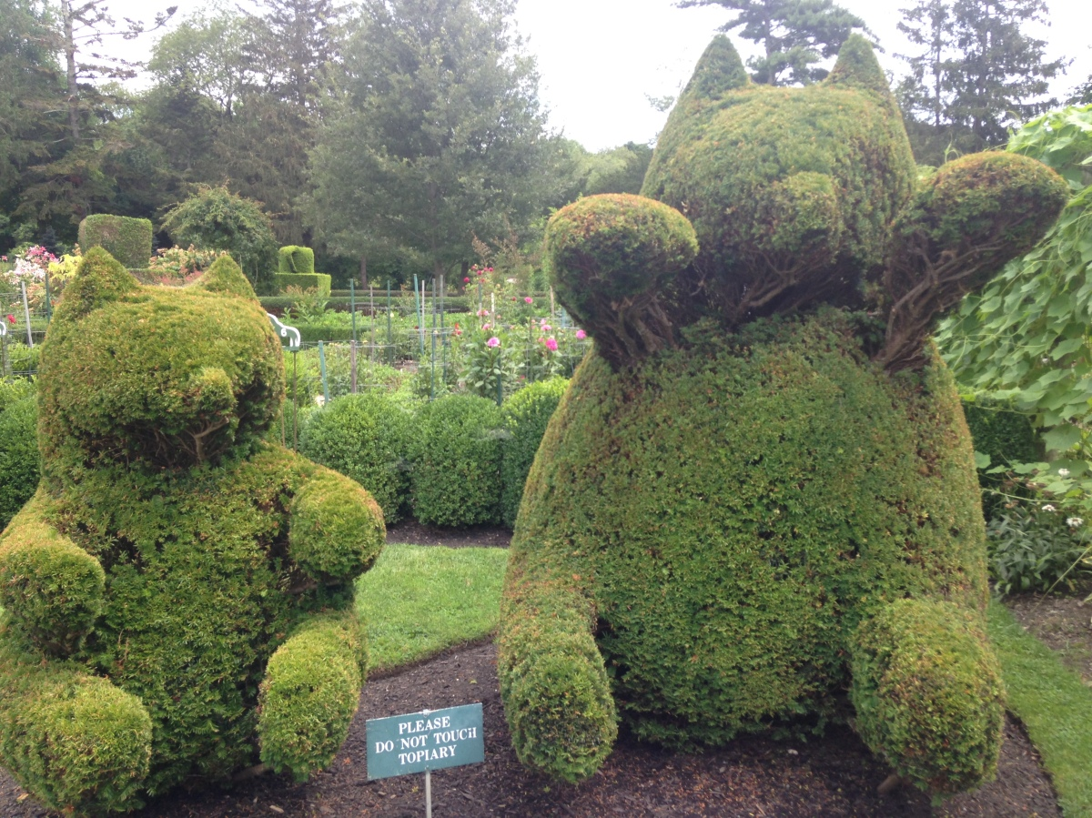 The Green Animals Topiary Garden (My Newport Adventures)