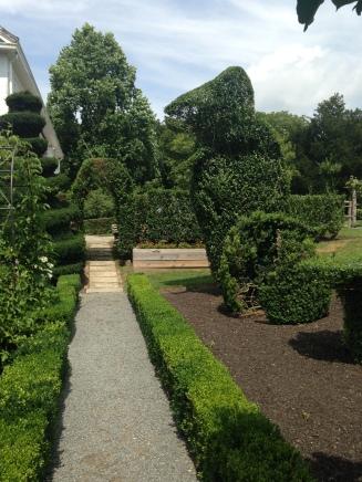 T-Rex topiary