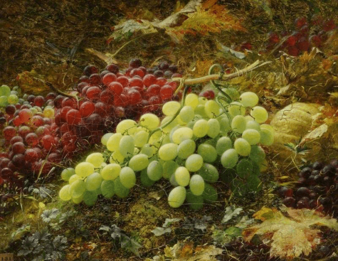 Grapes by William Jabez Muckley