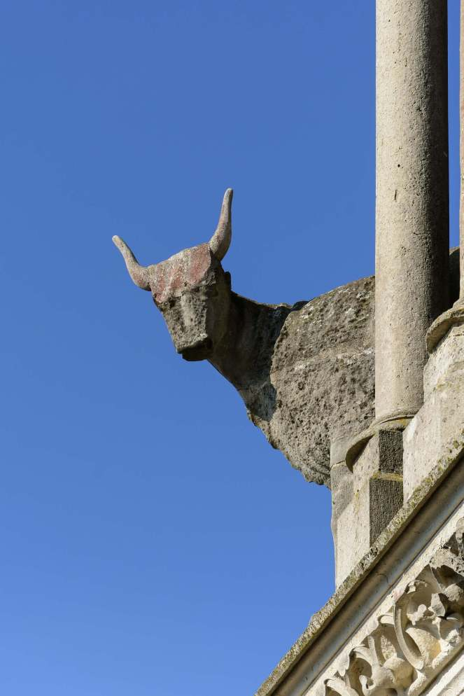 Laon Cathedral ox