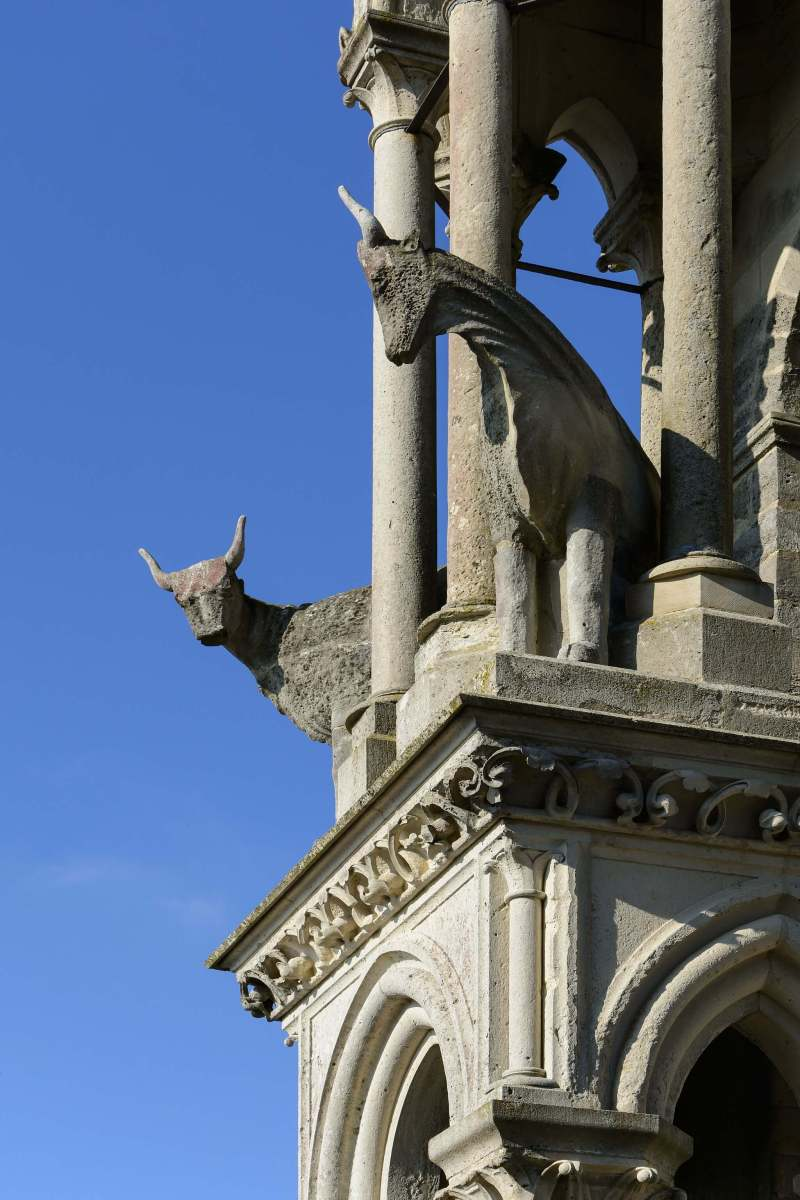 The Oxen of Laon Cathedral