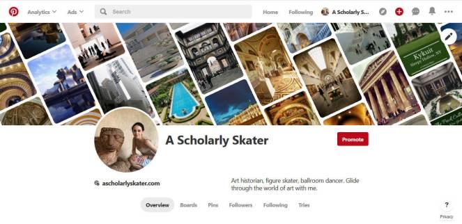 A Scholarly Skater pinterest