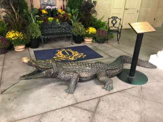 Jefferson Hotel alligators